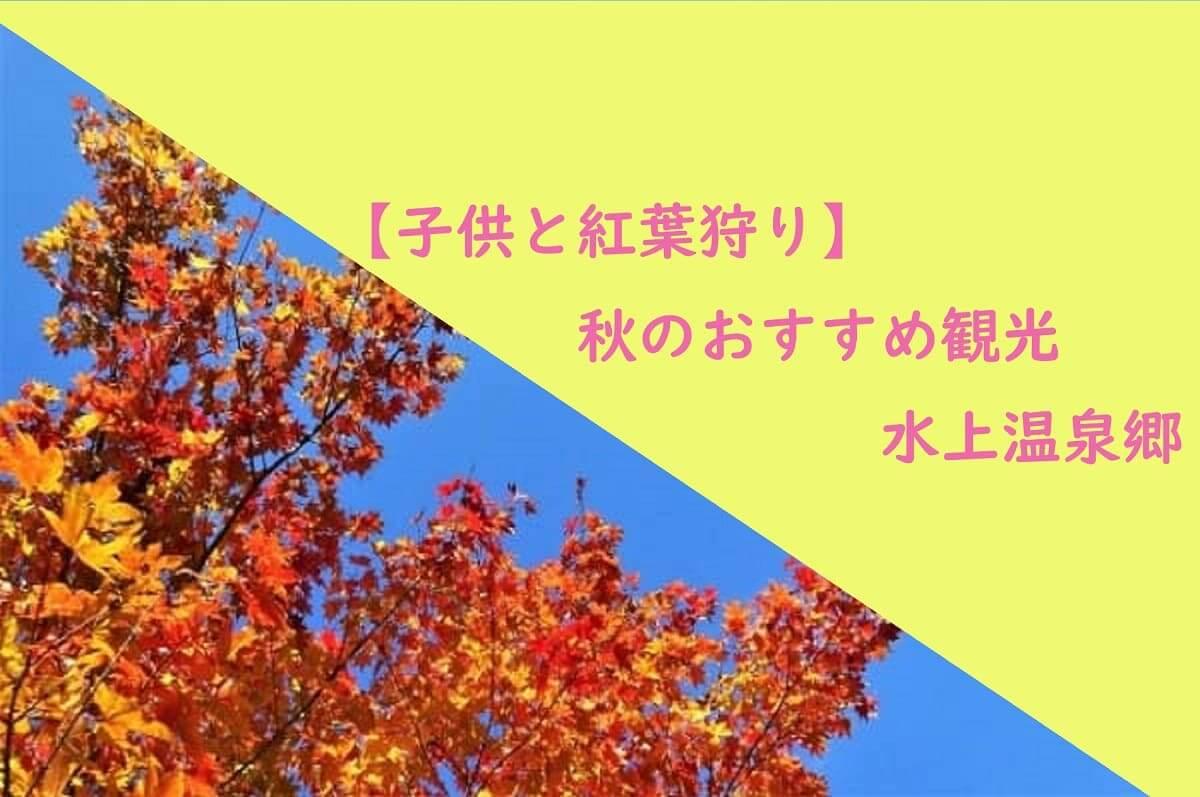 【広大な敷地と植物たち】家族で平塚の花菜ガーデンへ